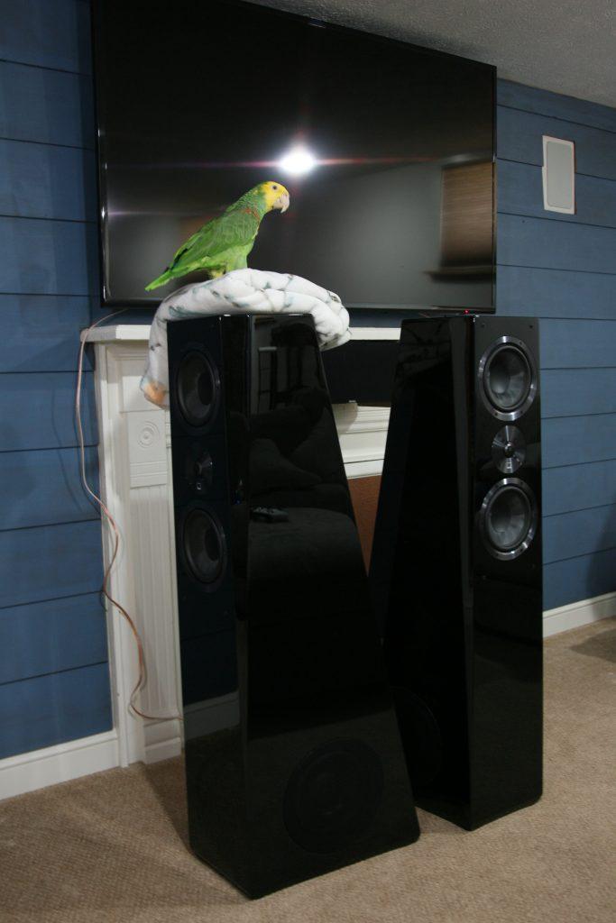 SVS Ultra Tower Review Pt 1 - Hifi Chicken - Hifi Reviews
